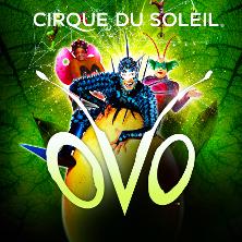 Cirque du Soleil 2017 - OVO