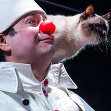 Clown & Cats - Moscow Cats Theater by Dmytri Kuklachev