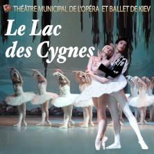 Le Lac des Cygnes - Théâtre Municipal de l